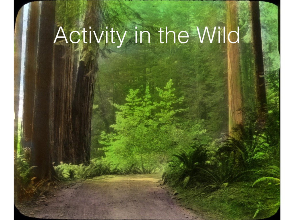 Activity in the Wild