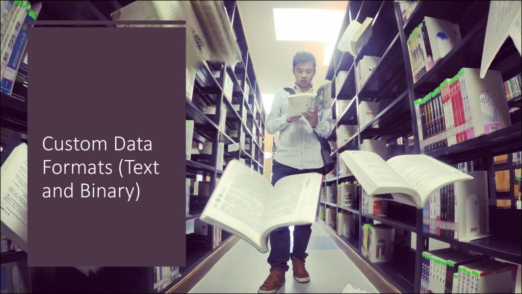 Custom Data Formats (Text and Binary)