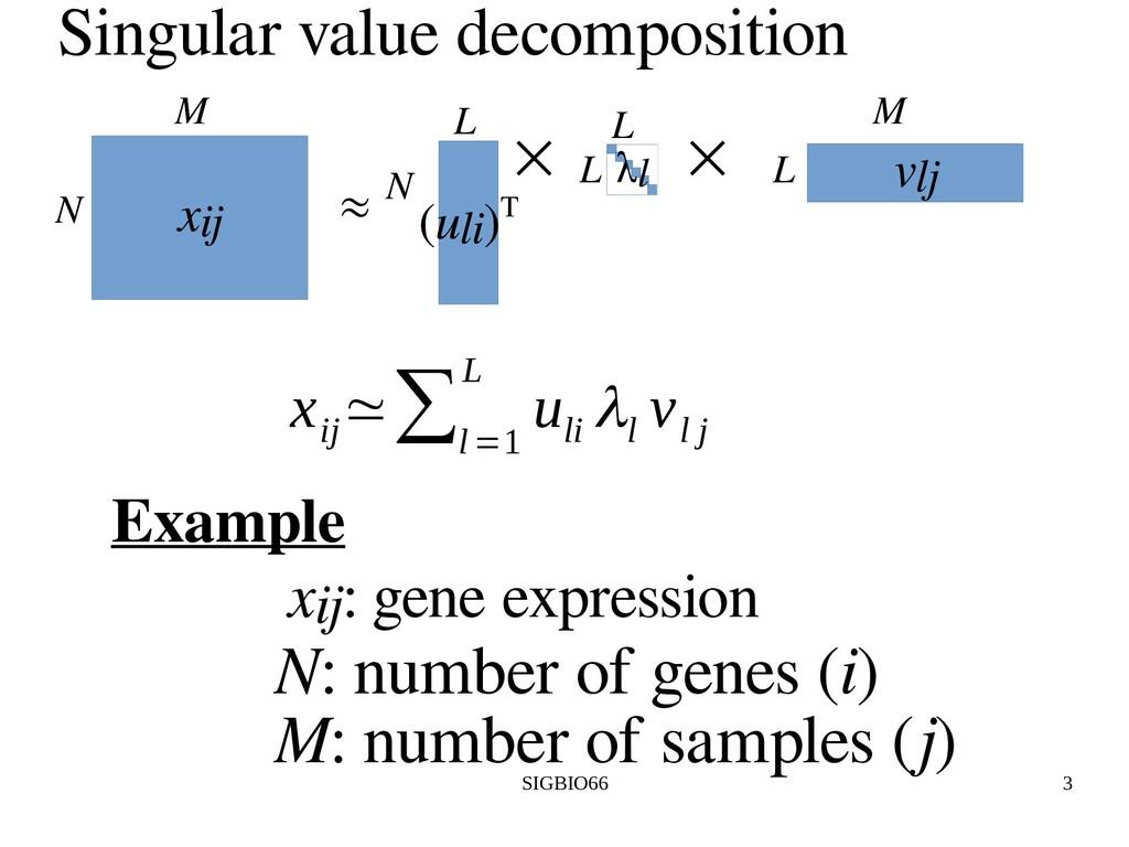 SIGBIO66 3 Singular value decomposition xij N M...