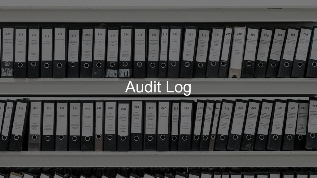 Audit Log