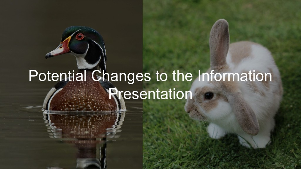 Potential Changes to the Information Presentati...