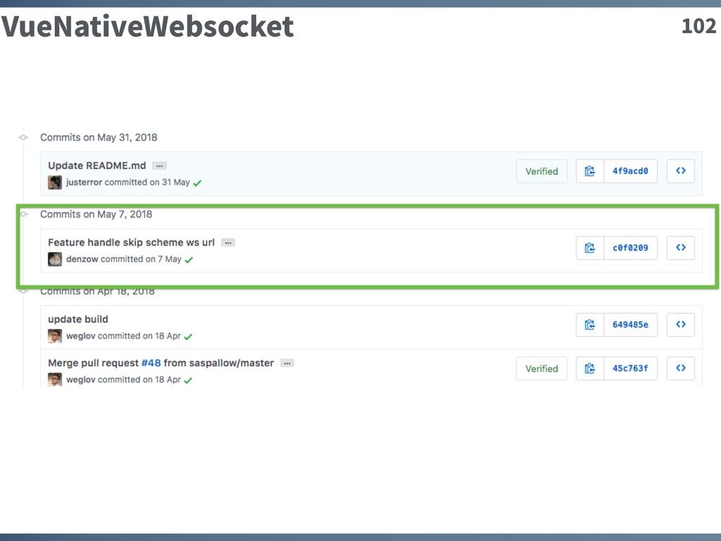 102 VueNativeWebsocket