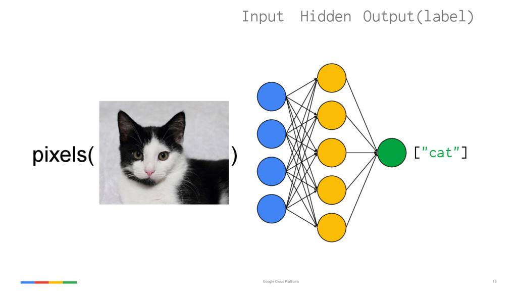 """Google Cloud Platform 18 [""""cat""""] Input Hidden O..."""