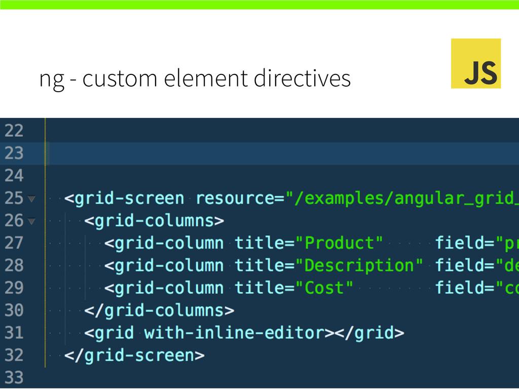 ng - custom element directives