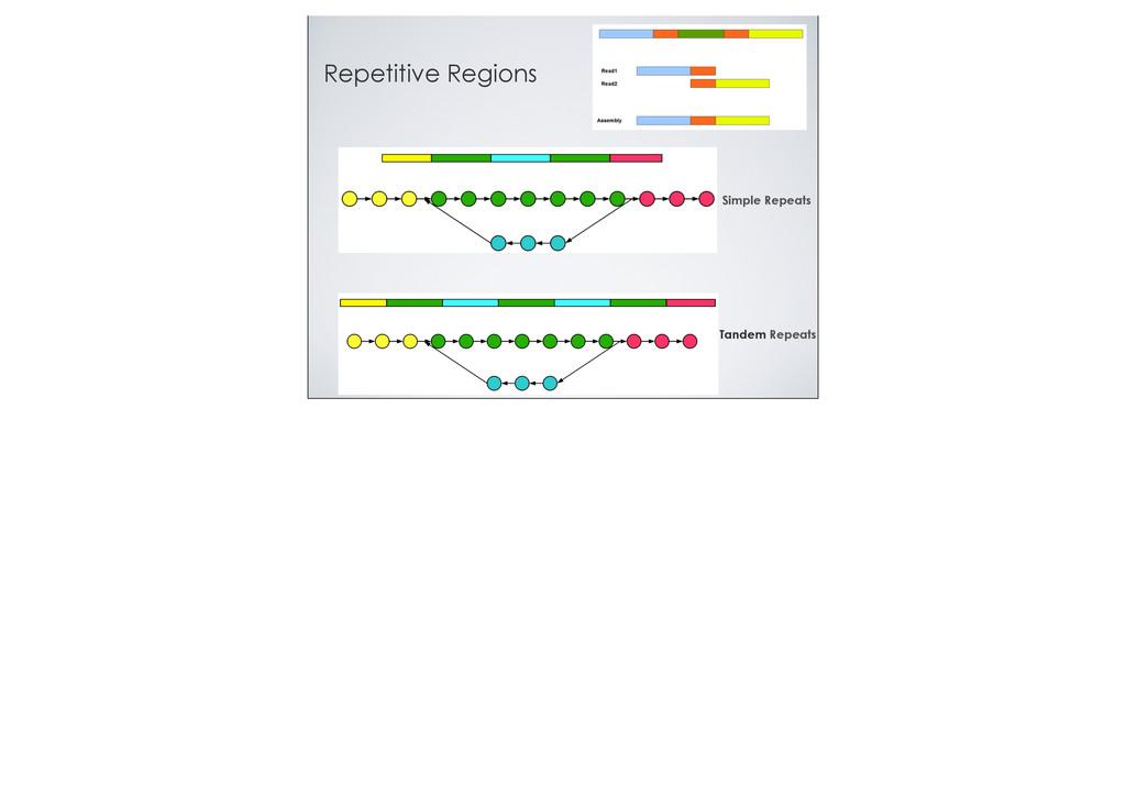 Repetitive Regions Simple Repeats Tandem Repeats