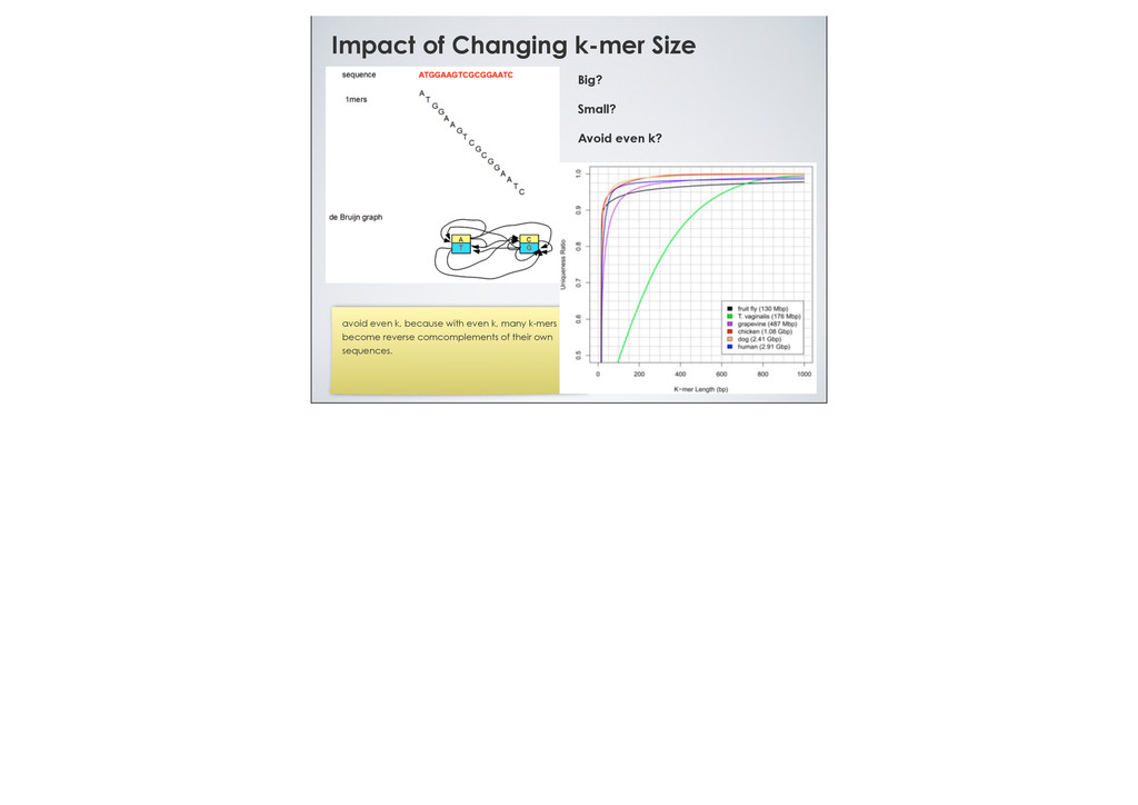Impact of Changing k-mer Size Big? Small? Avoid...