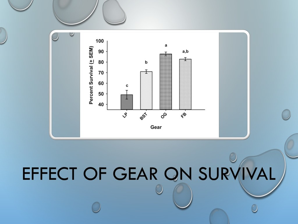 EFFECT OF GEAR ON SURVIVAL