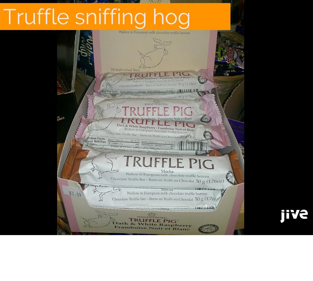 Truffle sniffing hog