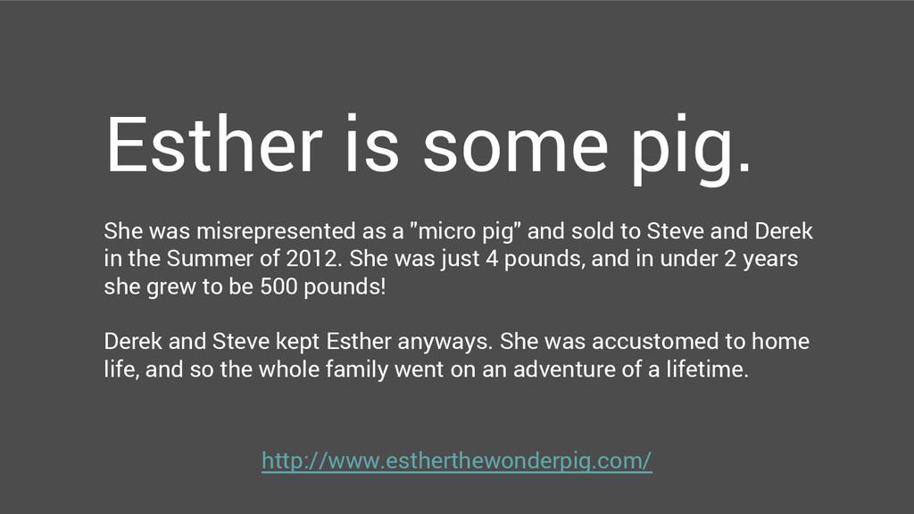 http://www.estherthewonderpig.com/ Esther is so...