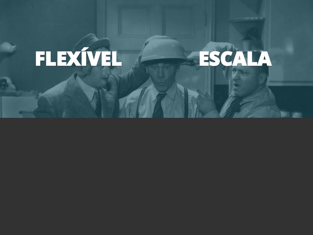 FLEXÍVEL ESCALA