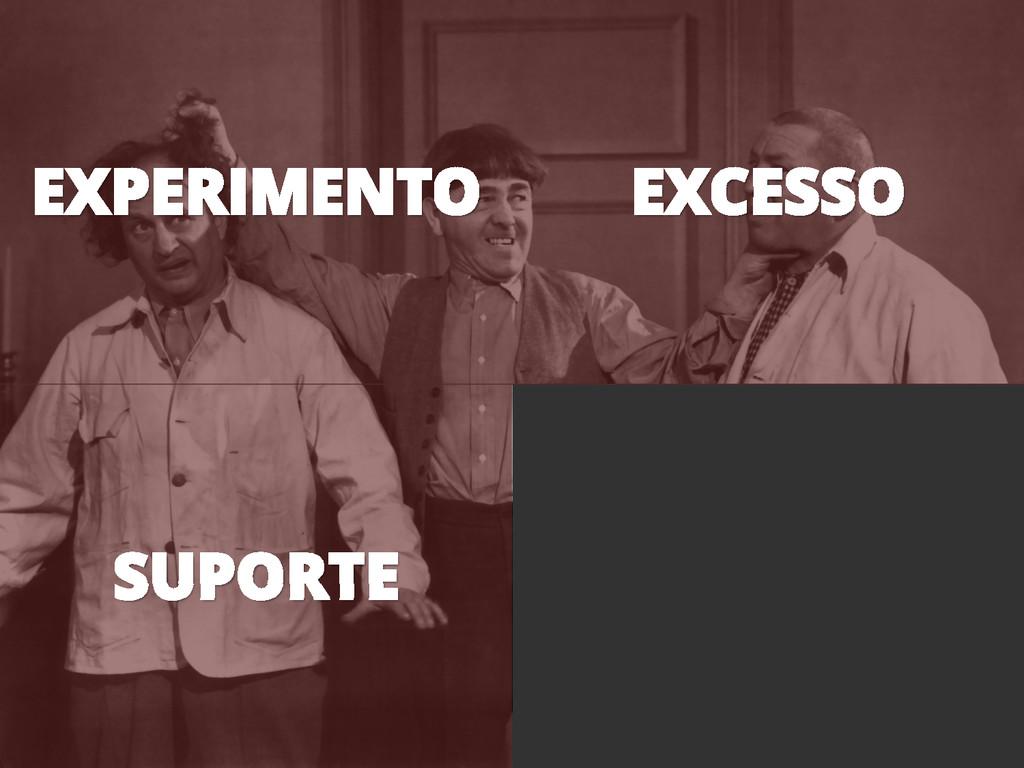 EXPERIMENTO EXCESSO SUPORTE