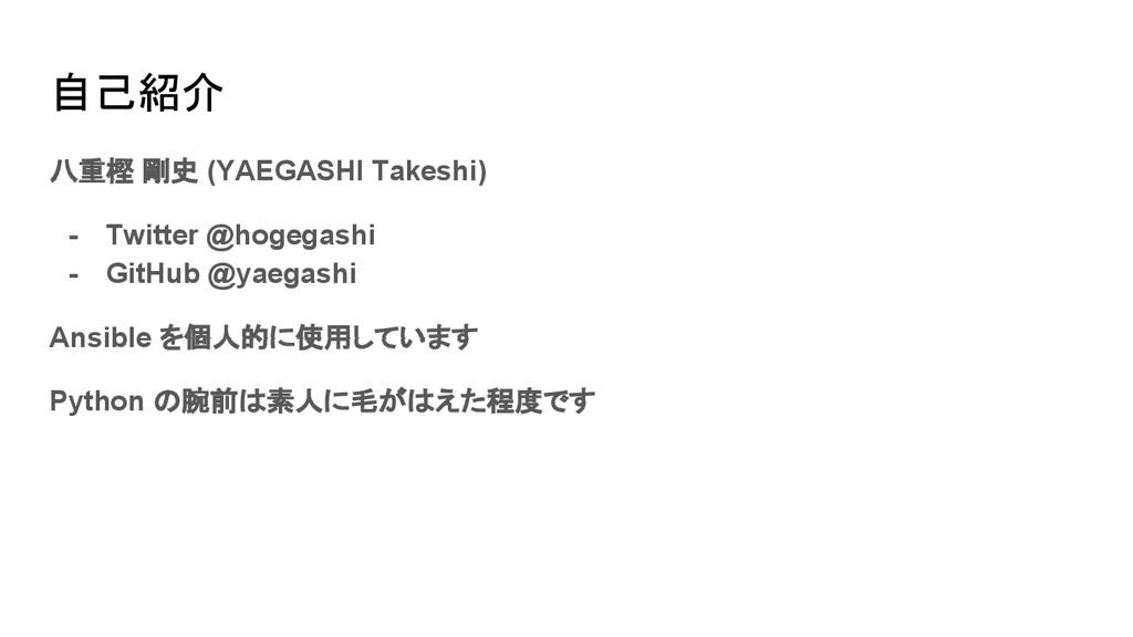 自己紹介 八重樫 剛史 (YAEGASHI Takeshi) - Twitter @hogeg...