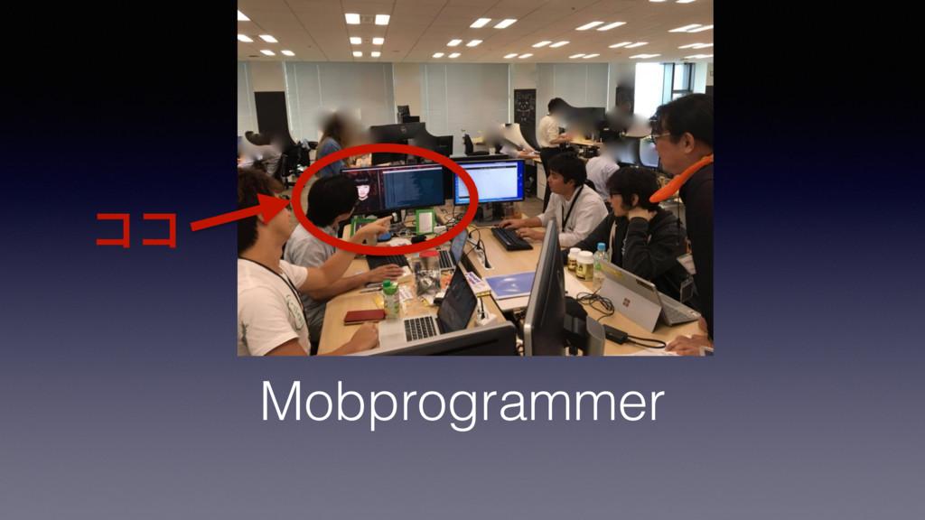 Mobprogrammer ίί