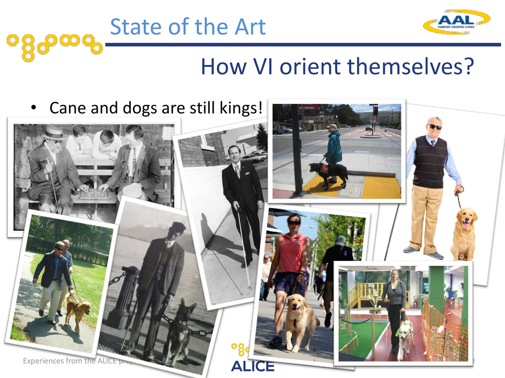 Experiences from the ALICE project How VI orien...