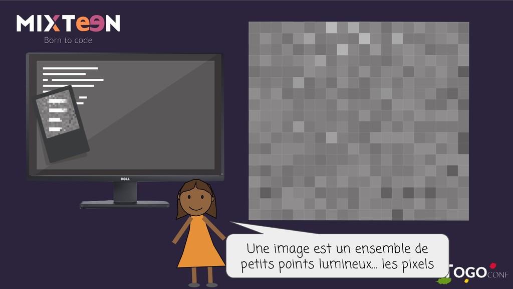 Une image est un ensemble de petits points lumi...