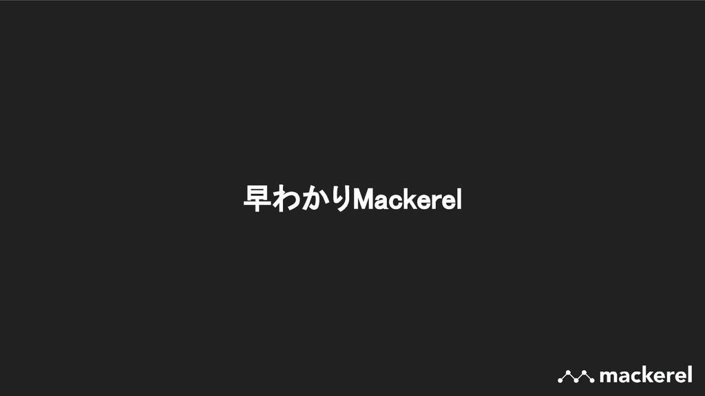 早わかりMackerel
