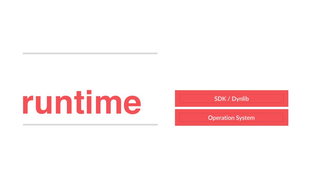 runtime Operation System SDK / Dynlib