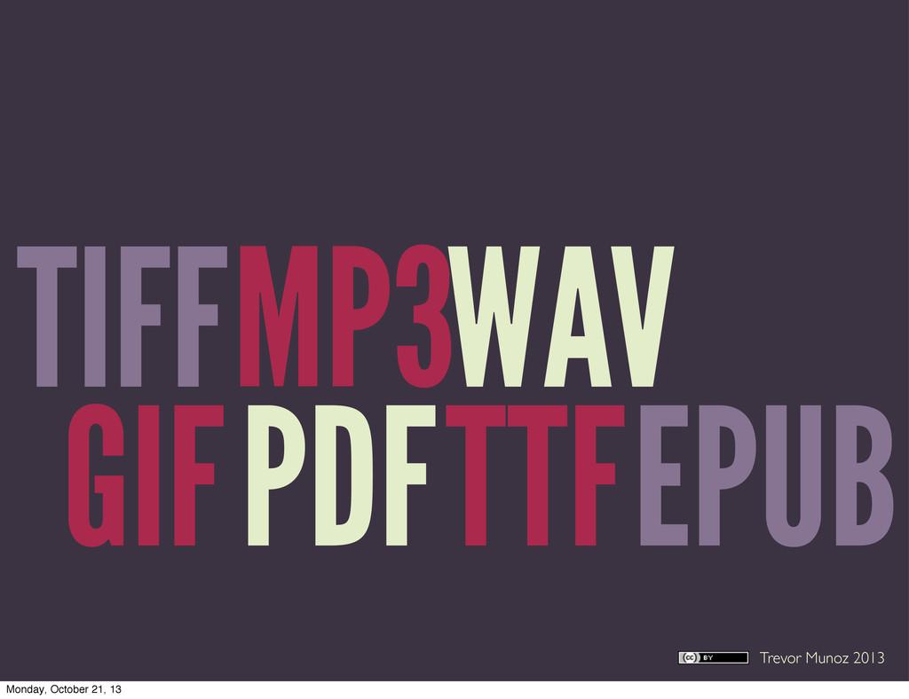 Trevor Munoz 2013 TIFF PDF MP3 EPUB WAV TTF GIF...
