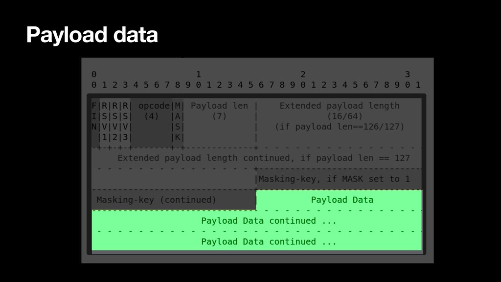 Payload data