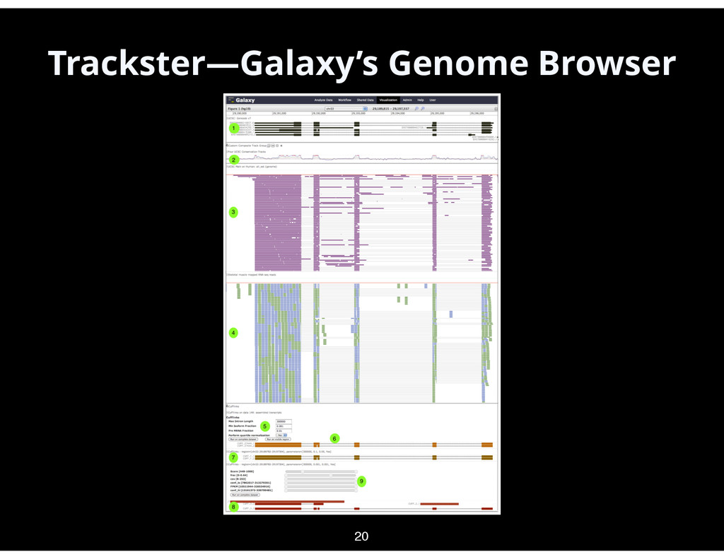 Trackster—Galaxy's Genome Browser 20