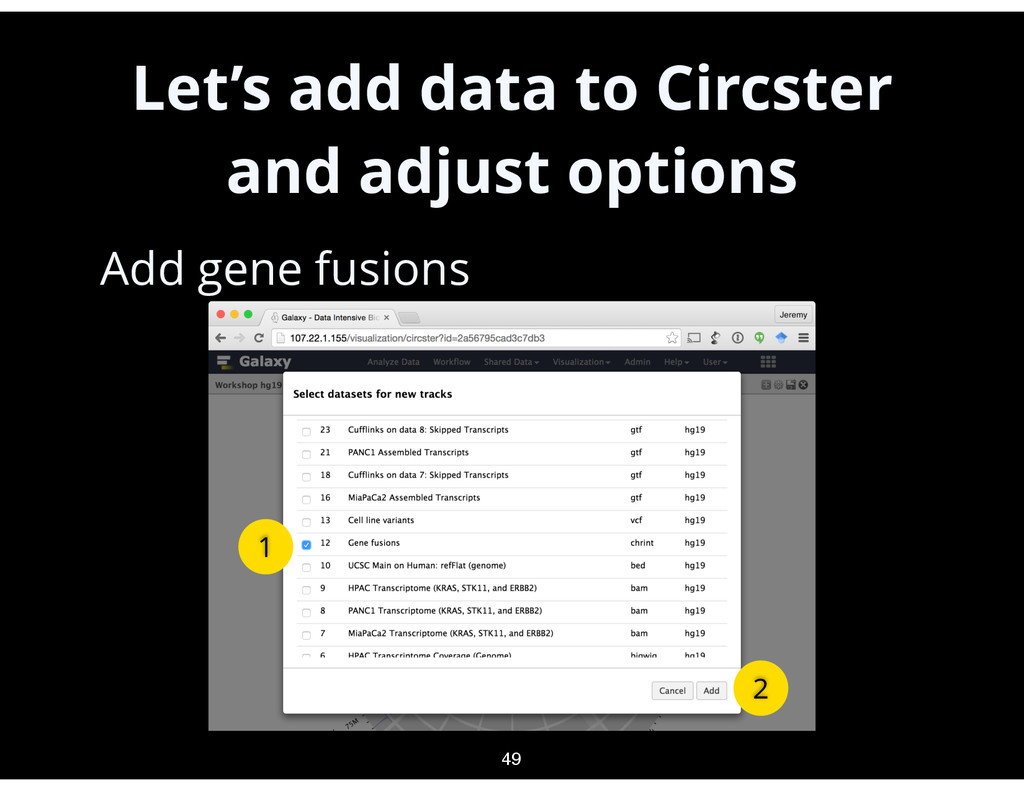 Let's add data to Circster and adjust options •...