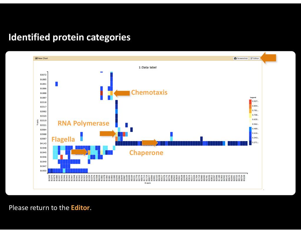 Identified&protein&categories Chemotaxis RNA&Po...