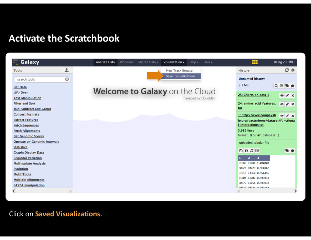 Activate&the&Scratchbook Click&on&Saved&Visuali...