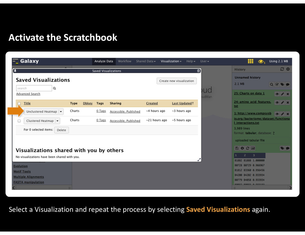 Activate&the&Scratchbook Select&a&Visualization...