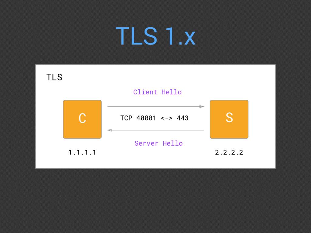 TLS 1.x Client Hello 1.1.1.1 2.2.2.2 TCP 40001 ...