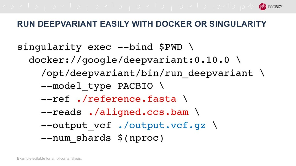 singularity exec --bind $PWD \ docker://google/...