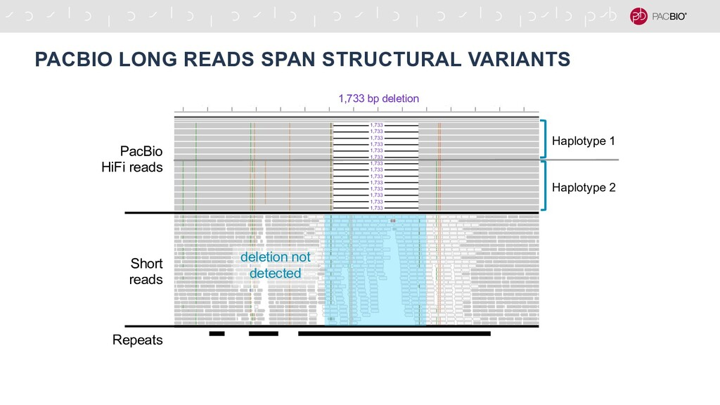 PACBIO LONG READS SPAN STRUCTURAL VARIANTS 1,73...