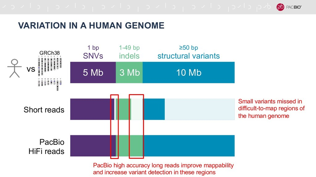 VARIATION IN A HUMAN GENOME 5 Mb 3 Mb 10 Mb 1 b...
