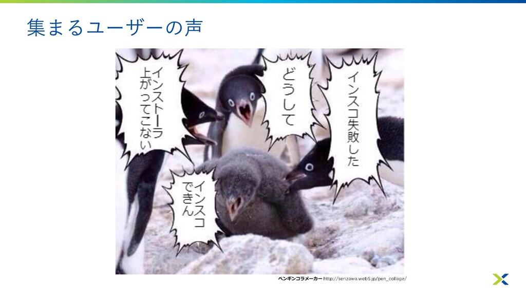 集まるユーザーの声 ペンギンコラメーカー