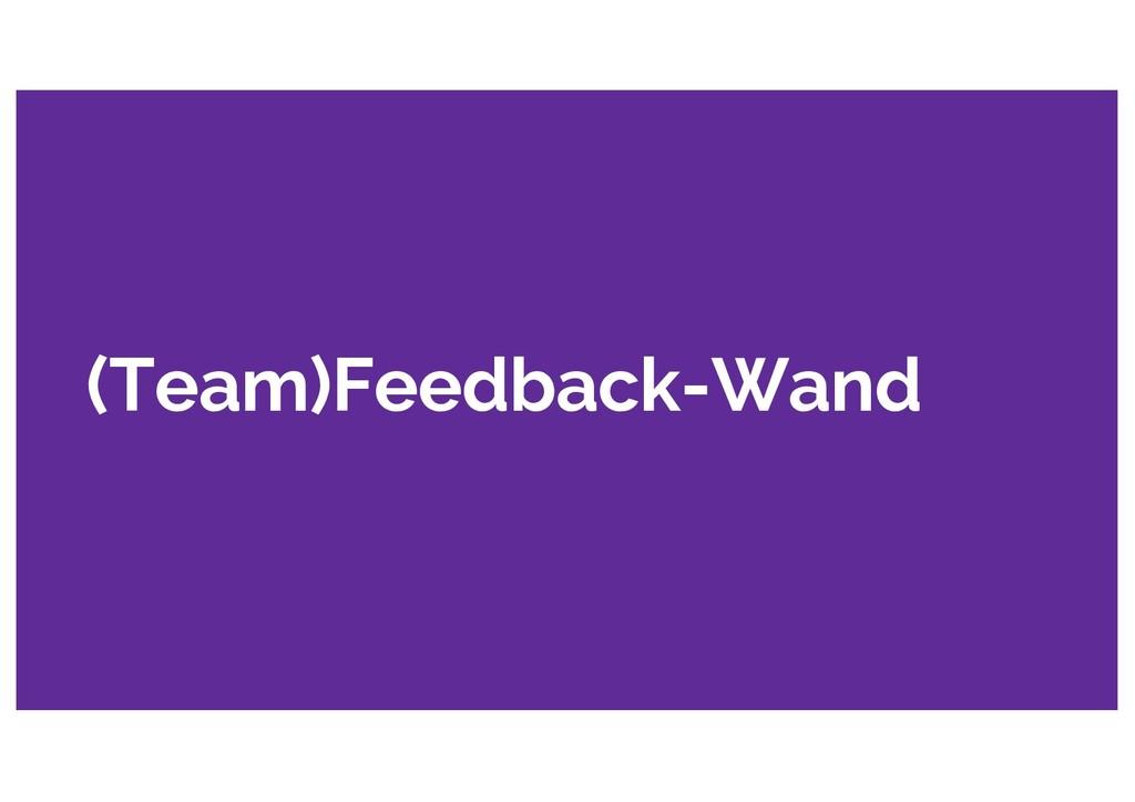 (Team)Feedback-Wand