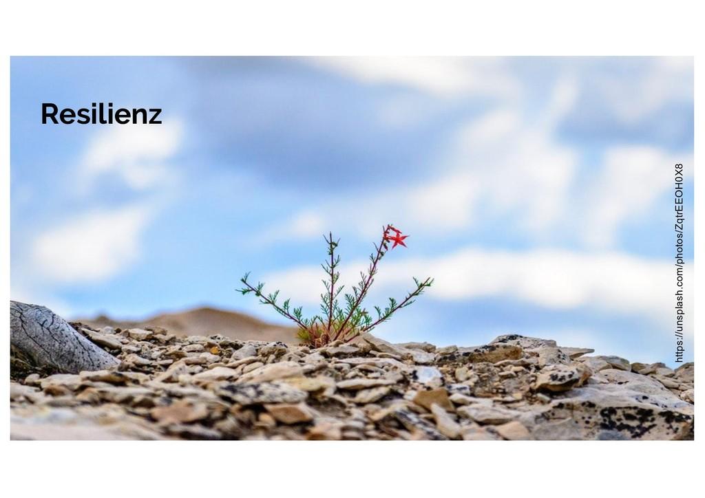 Resilienz https://unsplash.com/photos/ZqtrEEOH0...