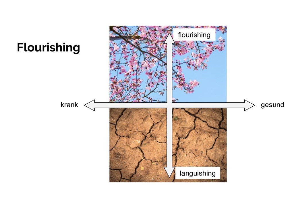 Flourishing languishing flourishing krank gesund