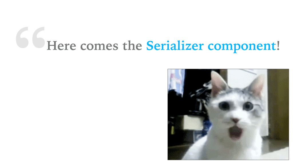 """""""Here comes the Serializer component!"""
