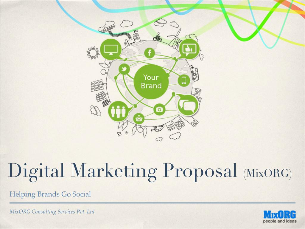 MixORG Consulting Services Pvt. Ltd. Digital Ma...