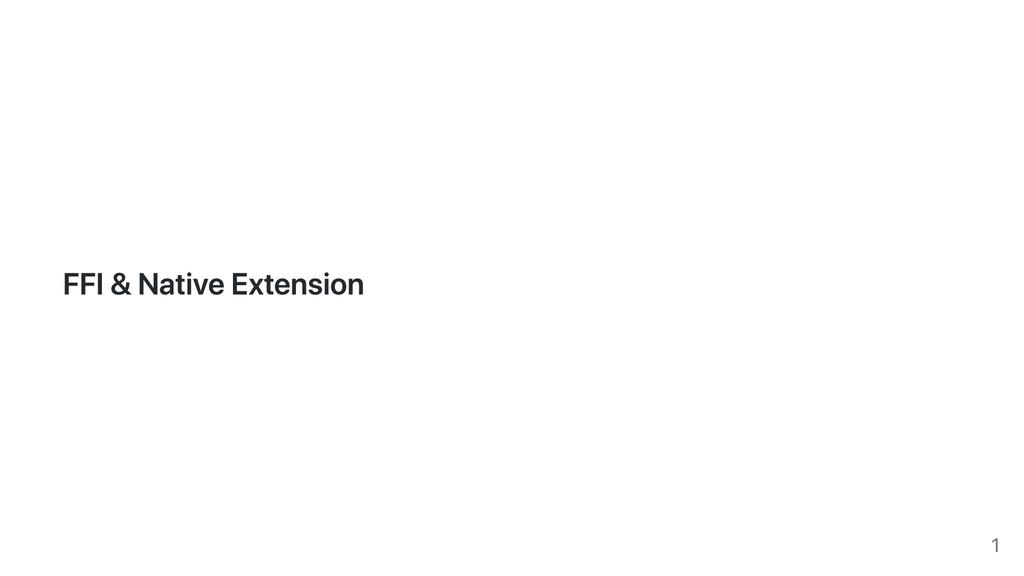 FFI & Native Extension 1