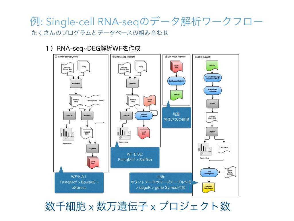 ྫ: Single-cell RNA-seqͷσʔλղੳϫʔΫϑϩʔ ͨ͘͞ΜͷϓϩάϥϜͱσ...