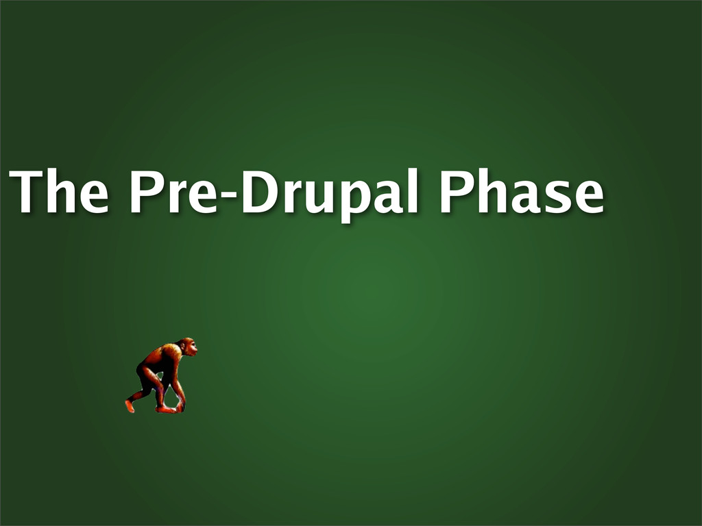 The Pre-Drupal Phase