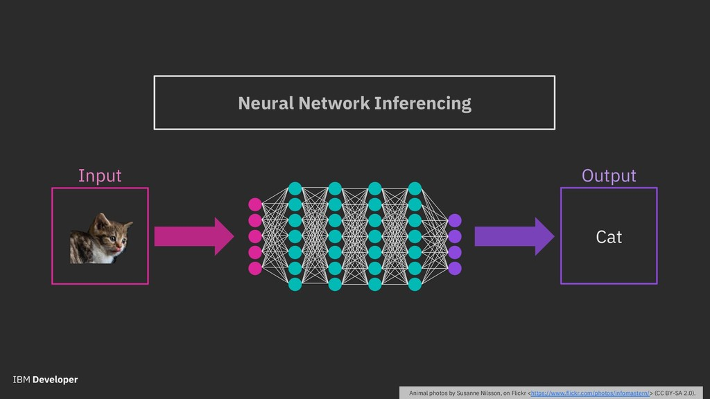 Input Neural Network Inferencing Output Cat Ani...