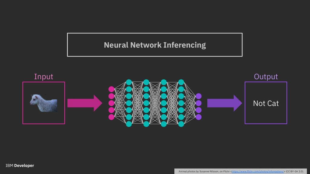 Neural Network Inferencing Output Not Cat Input...