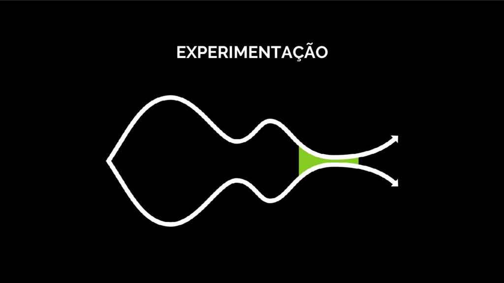 EXPERIMENTAÇÃO