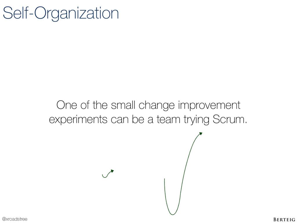 @xroadstree Self-Organization One of the small ...