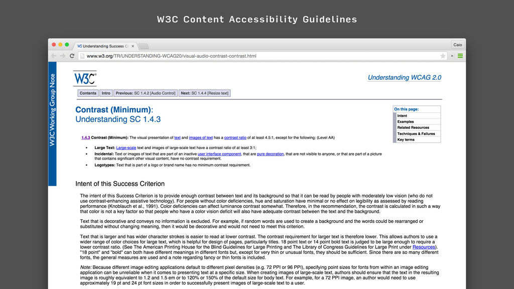 W3C Content Accessibility Guidelines