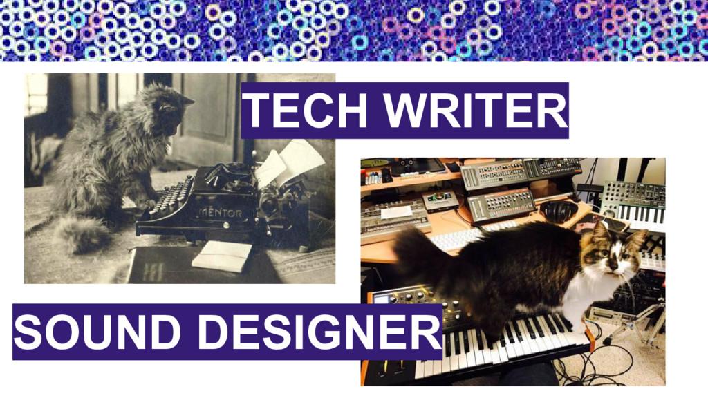 SOUND DESIGNER TECH WRITER