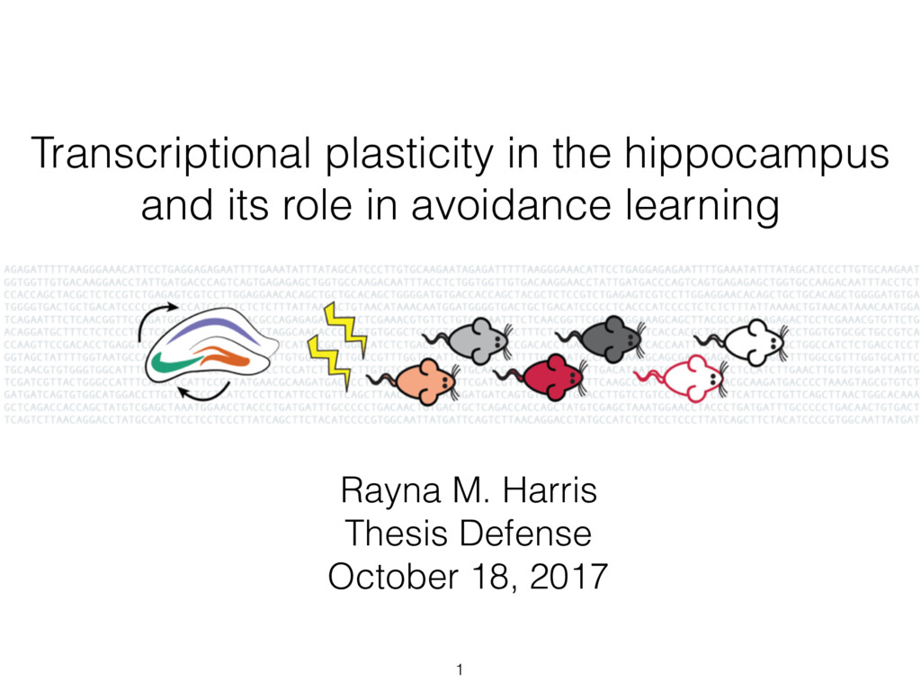 Transcriptional plasticity in the hippocampus a...