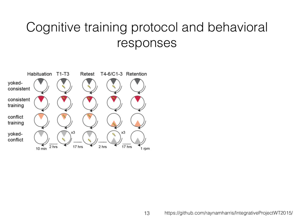 Cognitive training protocol and behavioral resp...
