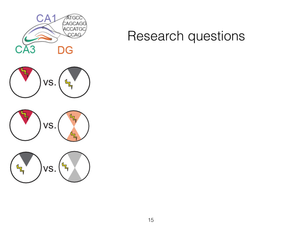 Research questions 15 vs. vs. vs. vs. vs. vs. v...
